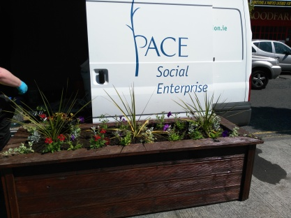 It comes in handy having a Horticulture project at the Social Enterprise